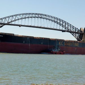 Sydney Harbour Bridge and iron ore ship