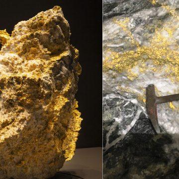 King Henry gold rock Perth Mint